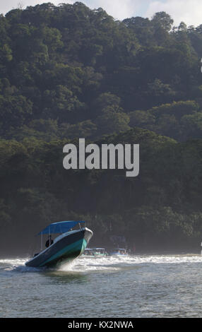 Boat with tourist view from ocean Corcovado national Park Osa Peninsula Costa Rica - Stock Photo