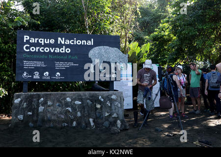 Hiker on trail Corcovado national Park Osa Peninsula Costa Rica in primary rain forest. Tropical Jungle tree - Stock Photo