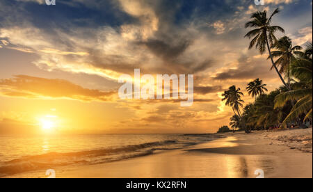 Beautiful sunset over the sea with a view at palms on the white beach on a Caribbean island - Stock Photo