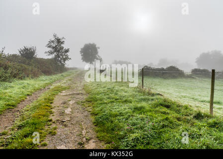 A path in the countryside, grass covered with dew and the sun trying to pierce the fog of a cold morning - Stock Photo