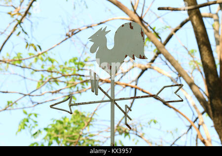 Rooster shaped weather vane against tree branch and blue sky, Thailand - Stock Photo