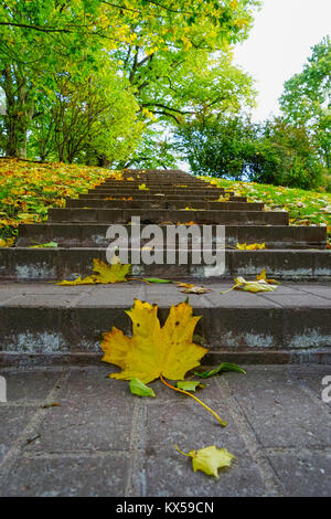 Leaf on the stairs in autumn - Stock Photo