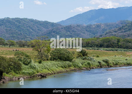 Rio Tarcoles, Carara National Park, province Puntarenas, Costa Rica - Stock Photo