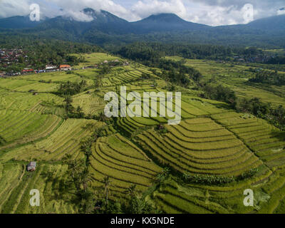 Bali UNESCO World Heritages Jatiluwih Rice Terrace, famous tourist destination in west part of Bali featured by - Stock Photo