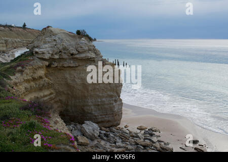 The jetty ruins at Port Willunga, South Australia peeking out from behind the flower lined cliffs prior to sunset. - Stock Photo