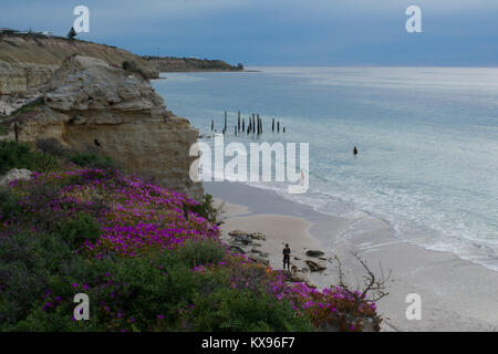 Port Willunga, South Australia, Australia - October 29, 2016: People swimming and a woman walking her dog on the - Stock Photo