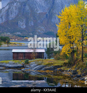 Autumnal coastal scene on Gronoy, Meloy, Nordland, Norway - Stock Photo