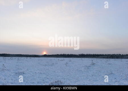 Sunrise in a cloudy winter sky over a forest swamp - Stock Photo