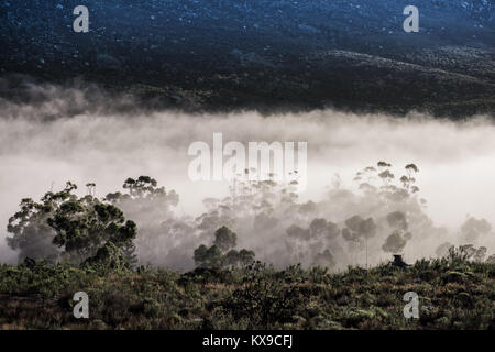 Early morning mist rolls into the Cederberg Mountains near Citrusdal, Western Cape, South Africa - Stock Photo