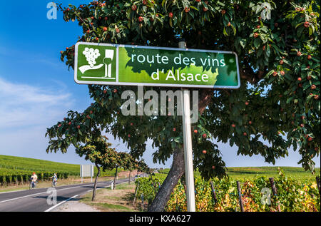 WINE ROUTE Route des Vins d'Alsace road sign in vineyards near Riquewihr Tourists cyclists exploring vineyards Riquewihr - Stock Photo