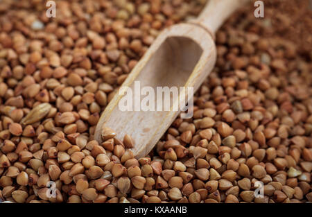 Wooden scoop and raw buckwheat - Stock Photo