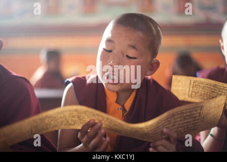 A young monk studies Buddhist scriptures during a prayer session in Nala monastery in Nala, Nepal on 23rd March - Stock Photo