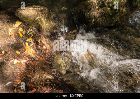 Color photograph of a crystal clear river flowing among the rocks covered with autumn leaves. - Stock Photo
