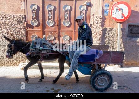 A man on a donkey drawn cart, Marrakesh - Stock Photo
