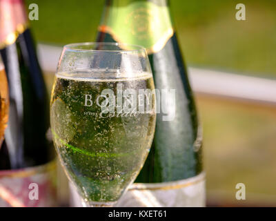 Bolney Wine Estate near Haywards Heath, West Sussex. - Stock Photo