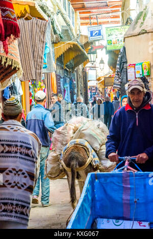 FEZ, MOROCCO - DECEMBER 10: Transporting the things by donkey and horse in the medina old town in Fez. December - Stock Photo