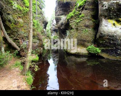 Adršpašsko-teplické skály picture-018 - Stock Photo