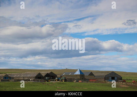 Large, working farm near Skaill House on Orkney Island, Scotland, United Kingdom with many barns, farm equipment, - Stock Photo