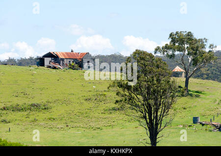 Derelict house and trees on hill, Cuttagee, New South Wales, Australia - Stock Photo