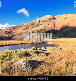 The River Brathay in the Little Langdale valley leading to Lingmoor Fell seen on a crisp autumnal afternoon.  Lake District National Park, UK.
