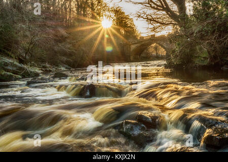 This is the River Almond, flowing under the Nasmyth Bridge in Almondell Country Park, near East Calder, West Lothian. - Stock Photo