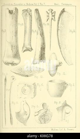 Atti della Società dei naturalisti e matematici di Modena BHL33697766 - Stock Photo