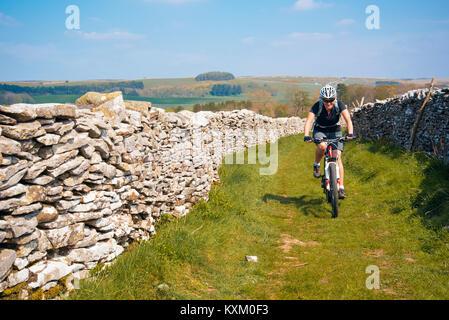 Female mountain biker on easy trail near Newbiggin-on-Lune, Cumbria - Stock Photo