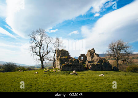Remains of Pendragon Castle in the Mallerstang valley Cumbria with Wild Boar Fell behind - Stock Photo