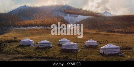 Mongolia Ulan Bator Ulaanbaatar ger camp sunset trees grasslands - Stock Photo