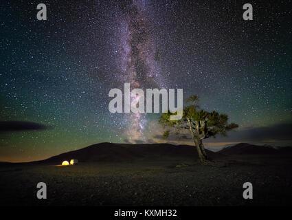 Mongolian milky way night sky astrophotography nightscape stars tree camping tent camper van Russian UAZ 452 Mongolia - Stock Photo