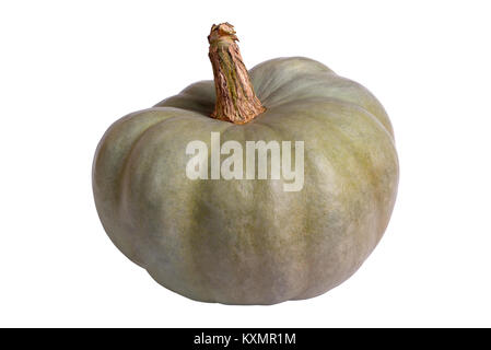 Green pumpkin isolated on white - Stock Photo