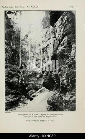 Botanische Jahrbücher fur Systematik, Pflanzengeschichte und Pflanzengeographie BHL5147024 - Stock Photo