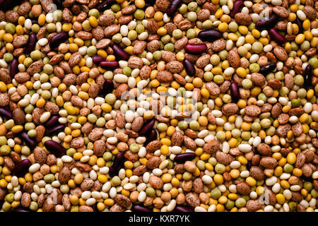 Various Kind of Legumes Background - Stock Photo