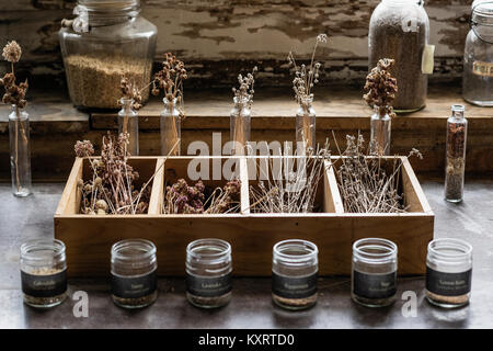 Dried herb and flowers, Canterbury Shaker Village, New Hampshire, USA.