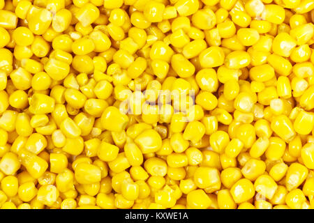 Close-up grains of corn over the entire surface of the image - Stock Photo