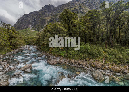 landscape of Hollyford Track, New Zealand - Stock Photo