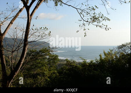 The west coast of Costa rica is a visual delight.  The lines of surf swell viewed through the trees. - Stock Photo