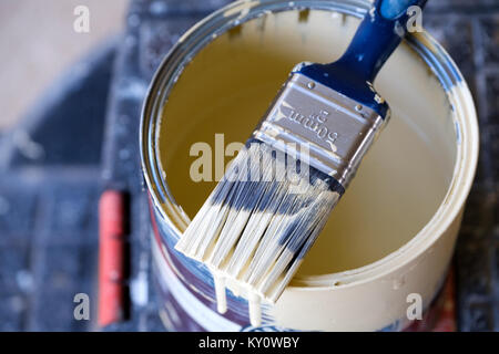 A half used tin of household interior wall paint with a used paint brush lying across the top of it. the brush is partially covered in wet paint