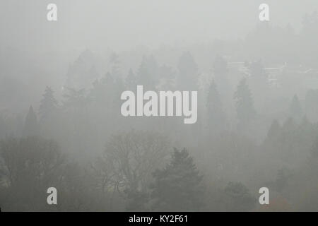 Crooksbury Hill, Farnham. 12th January 2018. Calm and misty conditions over the Home Counties this morning prior - Stock Photo
