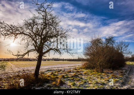 Color outdoor snowy landscpae panoramic photography of a morning sunrise with blue sky and clouds, sunlight and - Stock Photo