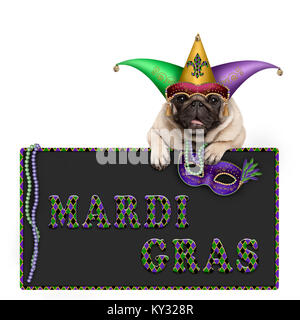 Mardi gras pug dog with carnival hat, beads and venetian mask hanging on blackboard sign with text, isolated on - Stock Photo