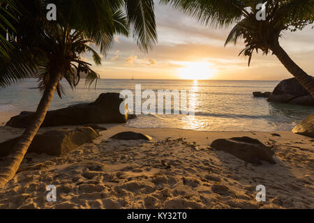 Sunset over tropical beach with palm trees and sailboats on horizon, Mahé, Seychelles - Stock Photo