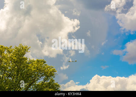 A Glider flying in bleu sky with big white clouds. The glider is a plane that has no engine - Stock Photo