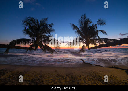 Palm trees during sunset on a beautiful tropical beach on Koh Kood island in Thailand - Stock Photo