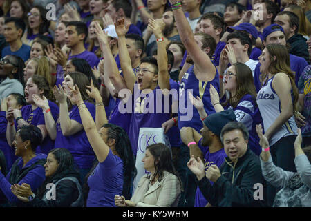 Seattle, WA, USA. 13th Jan, 2018. The University of Washingont student section in action during a PAC12 basketball - Stock Photo
