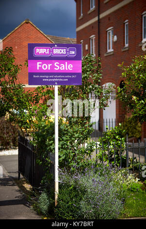A Purple Bricks estate agents For Sale sign outside a house on a modern housing estate in Aylesbury, Buckinghamshire - Stock Photo