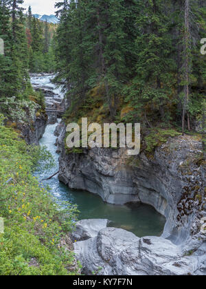 Maligne Creek Canyon near the first bridge, Jasper National Park, Alberta, Canada. - Stock Photo