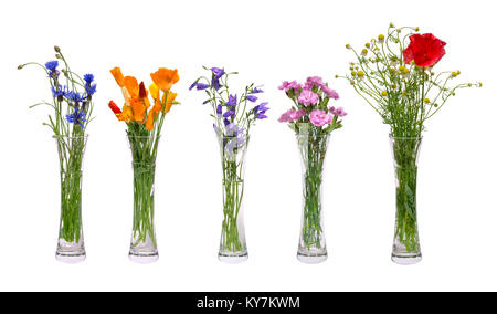 A set of different wildflowers in transparent vases. Spring flowers isolated on white background. A bouquet of cornflowers, - Stock Photo