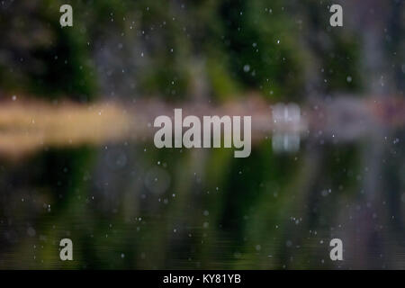 MAYNOOTH, ONTARIO, CANADA - November 7, 2017: Snow falls on a lake in autumn. - Stock Photo