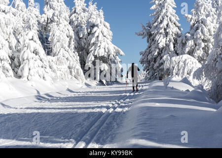 Winter road in mountains. Male skier on groomed ski trails for cross-country. Trees covered with fresh snow in sunny - Stock Photo